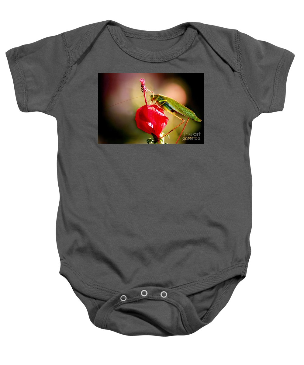 Flowers Baby Onesie featuring the photograph The Summit by Jeff McJunkin