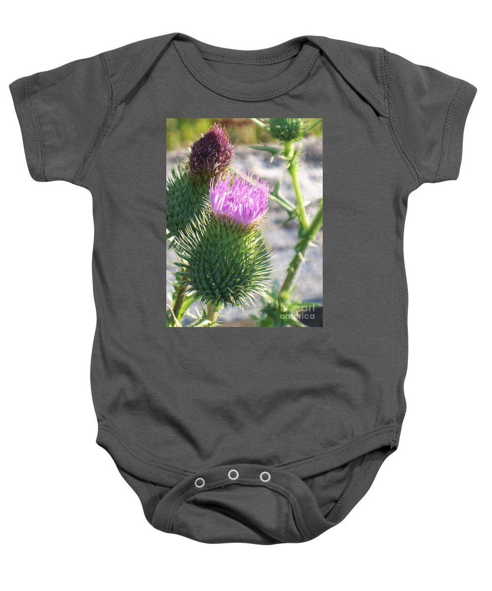 Thistle Baby Onesie featuring the painting Thistle Flower by Eric Schiabor