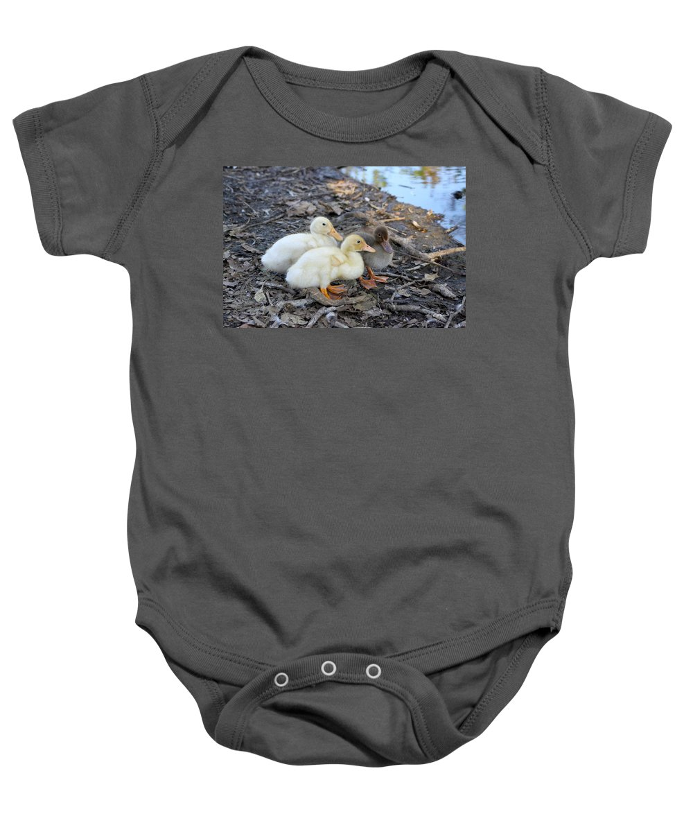 Baby Baby Onesie featuring the photograph Three Baby Ducks by Diana Haronis