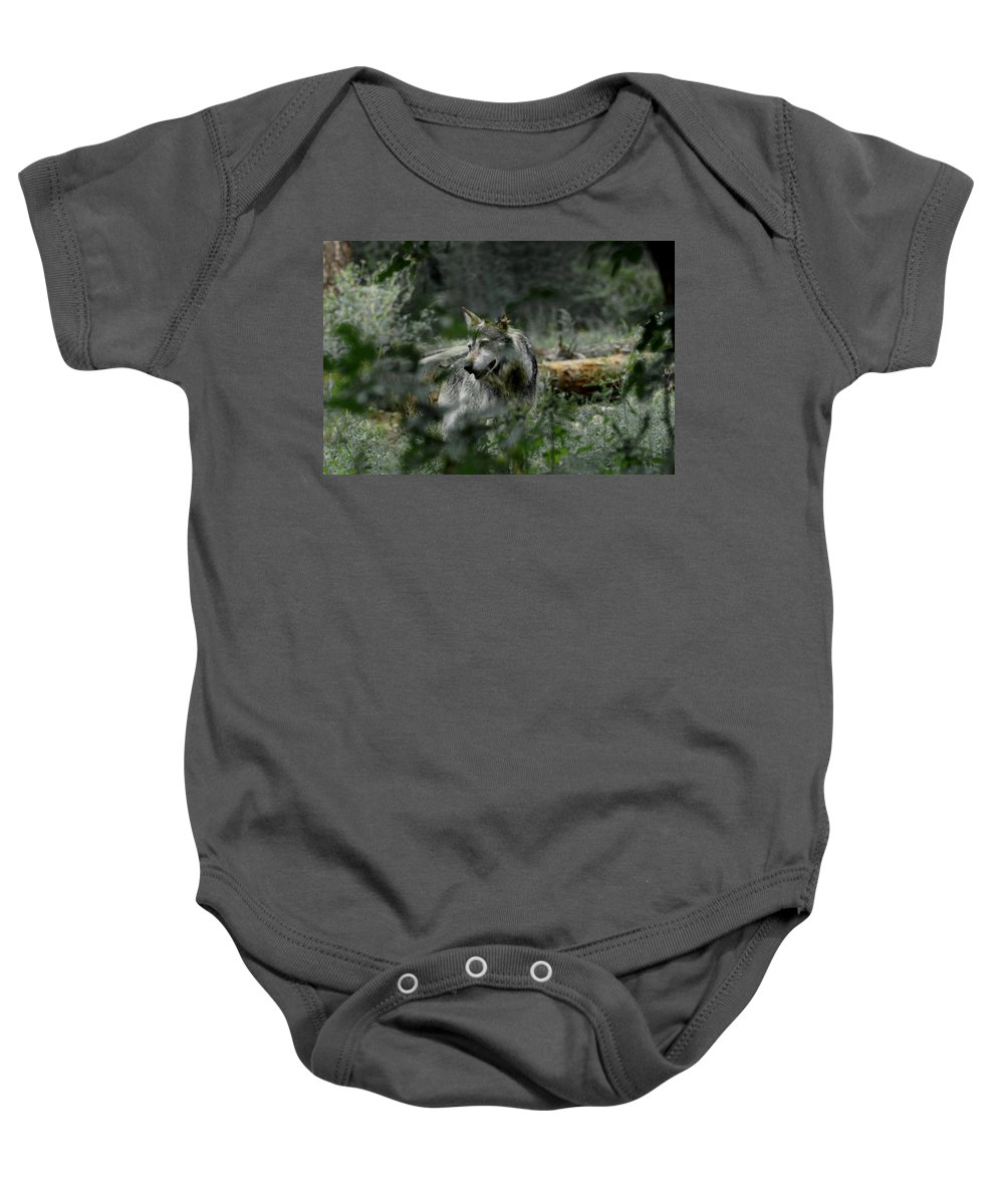 Wolf Baby Onesie featuring the photograph Through The Bushes by Ernie Echols