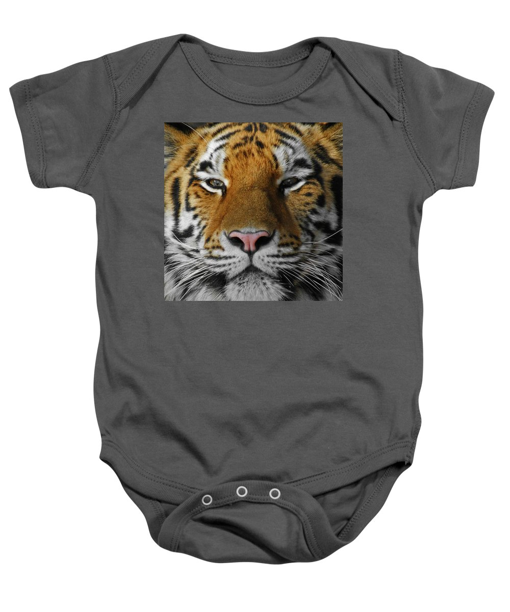 Tiger Baby Onesie featuring the photograph Tiger 1 by Ernie Echols