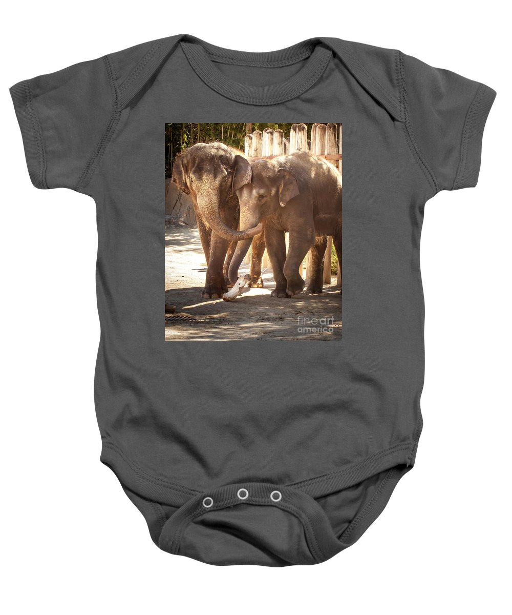 Animal Baby Onesie featuring the photograph Tons Of Fun by Robert Frederick