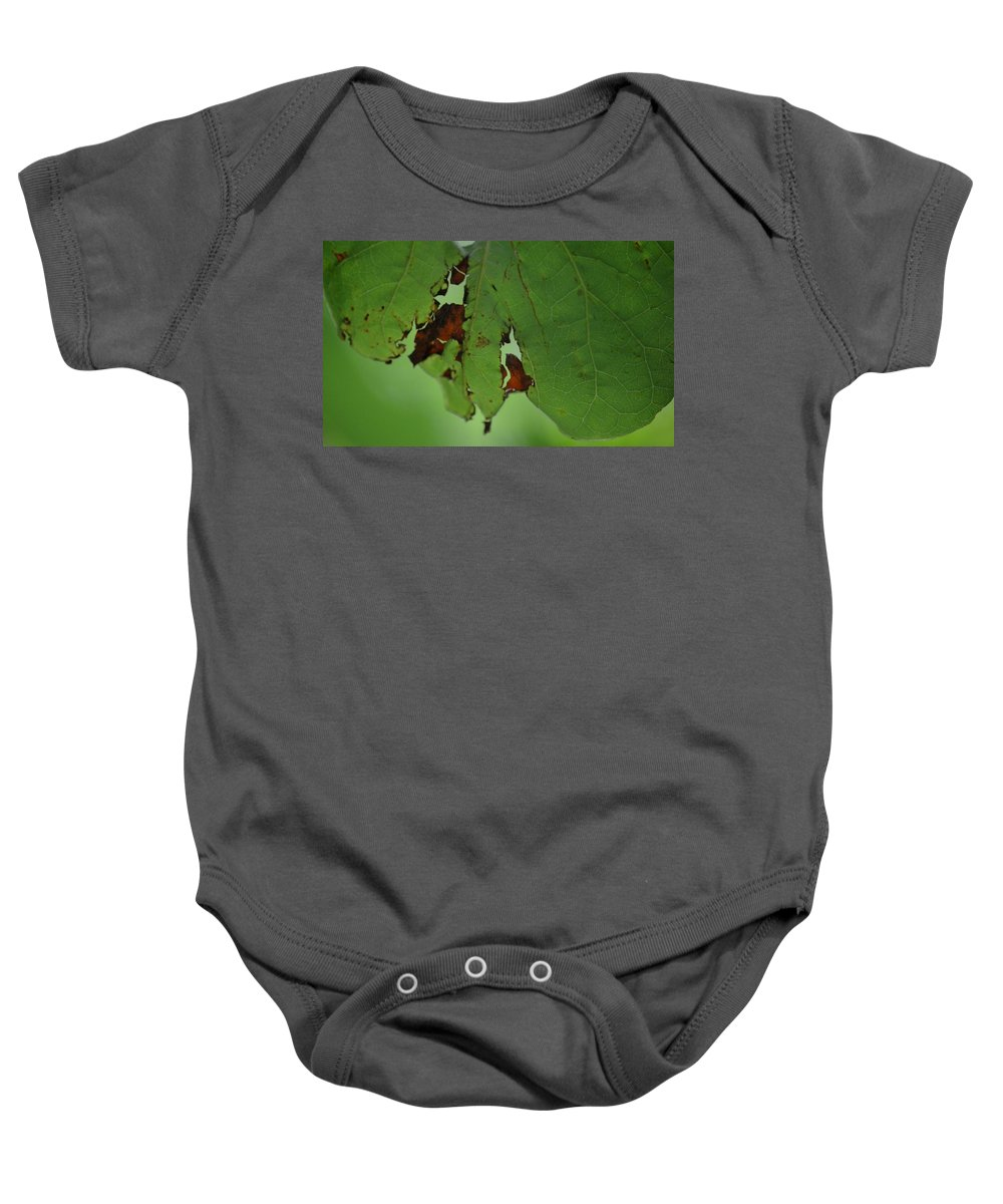Torn Leaf Abstract Baby Onesie featuring the photograph Torn Leaf Abstract by Maria Urso