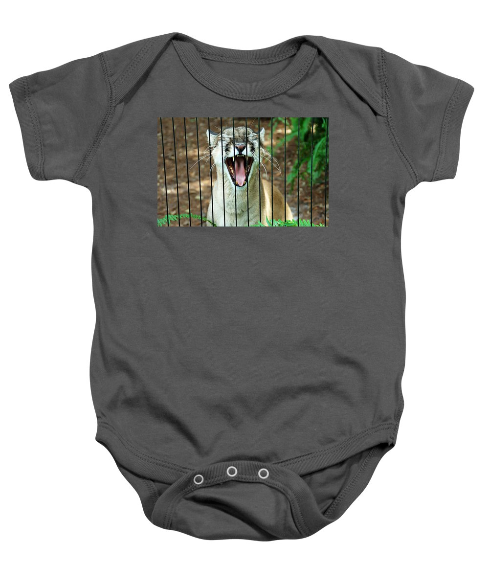 Panther Baby Onesie featuring the photograph Trapped In A Cage by Aimee L Maher ALM GALLERY