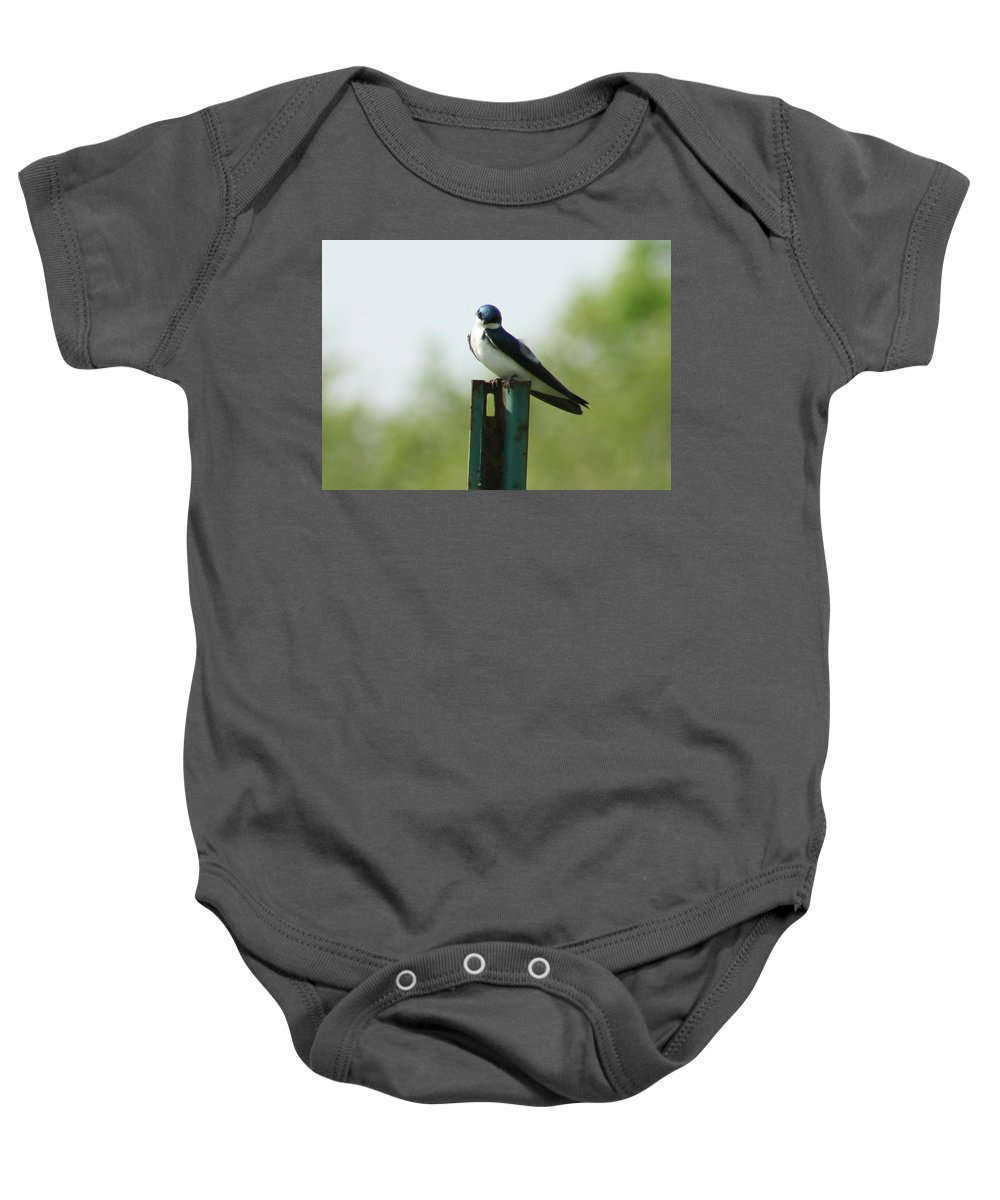 Tree Swallow Baby Onesie featuring the photograph Tree Swallow Wink by Neal Eslinger