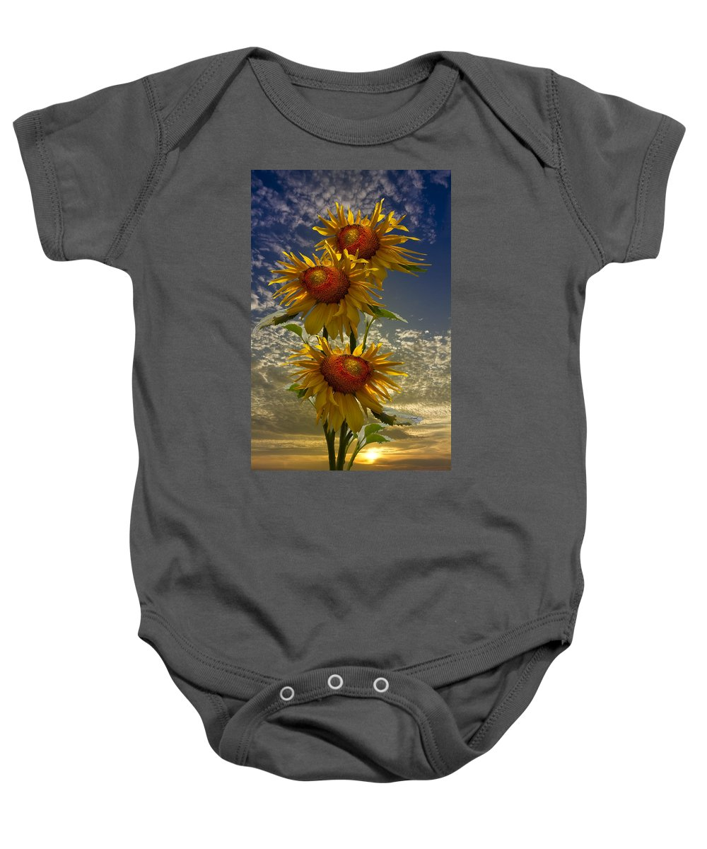 Austria Baby Onesie featuring the photograph Trio Of Sunflowers by Debra and Dave Vanderlaan