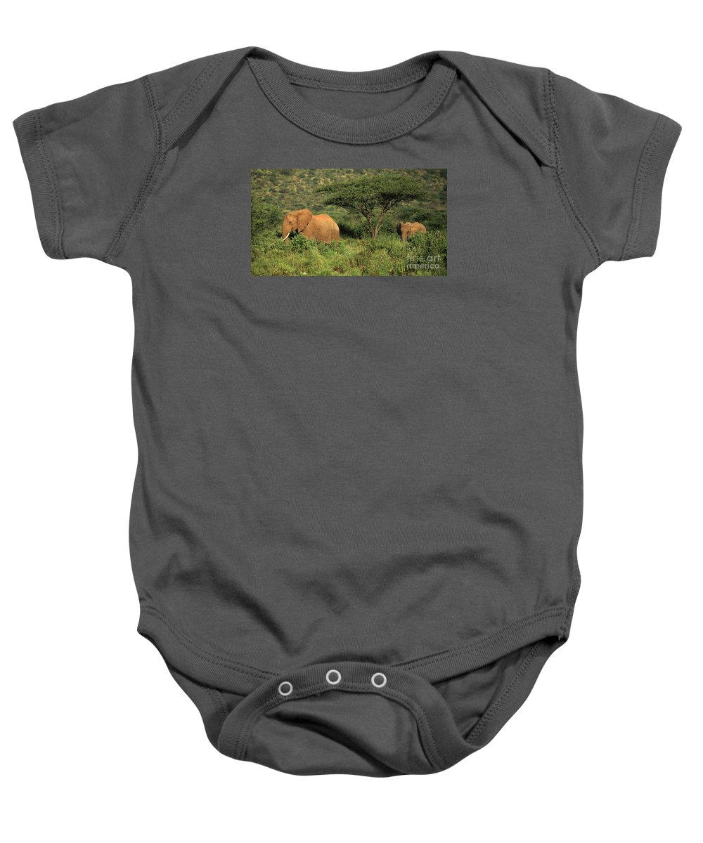 Africa Baby Onesie featuring the photograph Two Elephants Walking Through The Grass by Deborah Benbrook