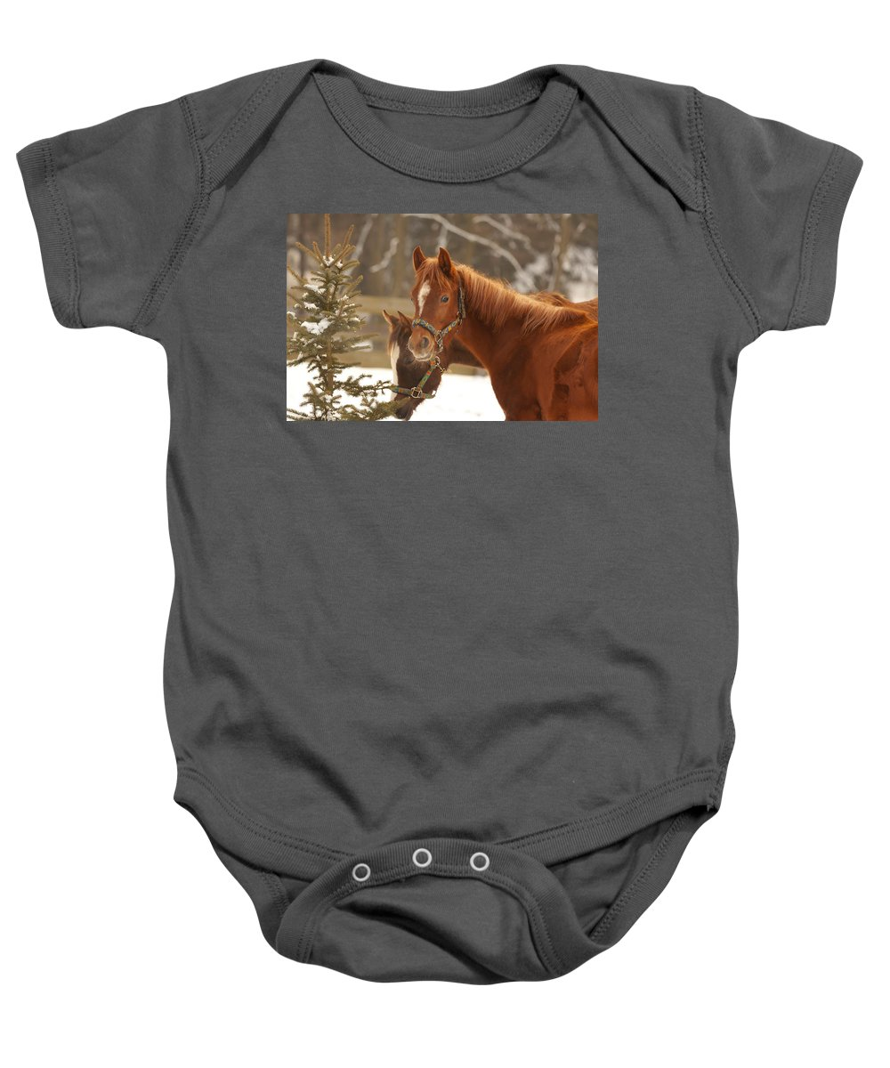 Animal Baby Onesie featuring the photograph Two Horses In Winter Day by Jaroslav Frank