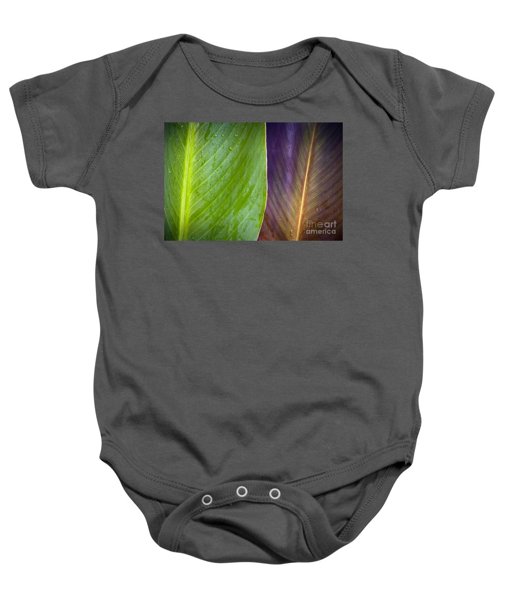 Background Baby Onesie featuring the photograph Two Leaves by Tim Hester
