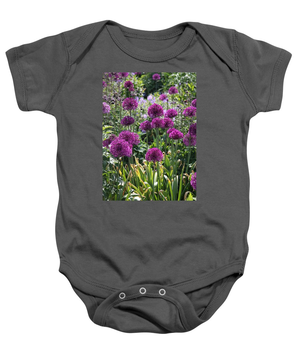 Flowers Baby Onesie featuring the photograph Violet Flowerbed by Christiane Schulze Art And Photography