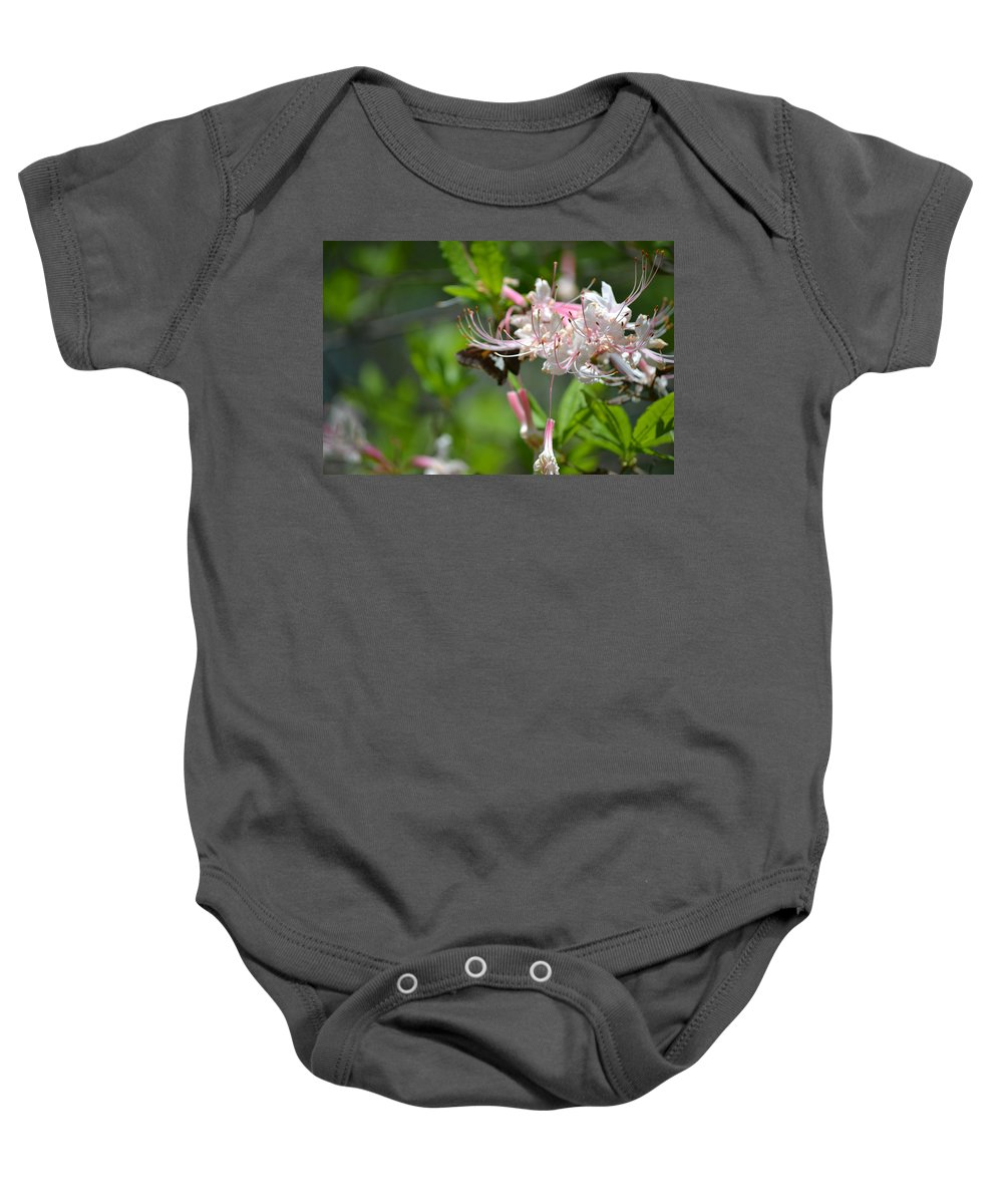Moth Baby Onesie featuring the photograph Visitor by Tara Potts