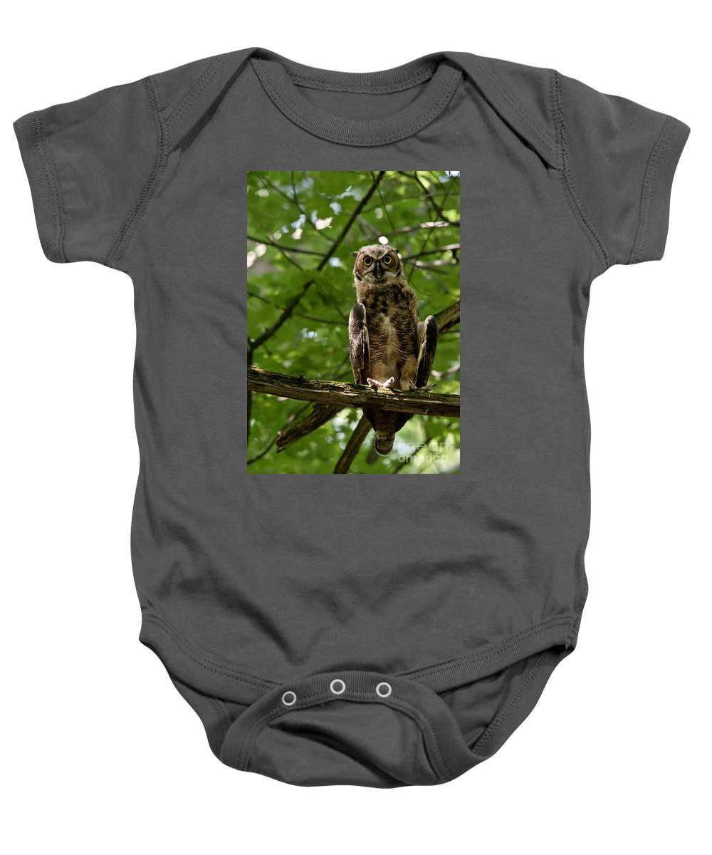 Owlets Baby Onesie featuring the photograph Warm Young Great Horned Owl by Cheryl Baxter