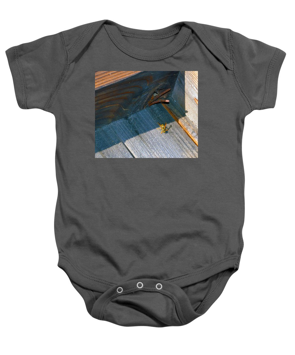 Fence Baby Onesie featuring the photograph Wasp 4 by Brent Dolliver