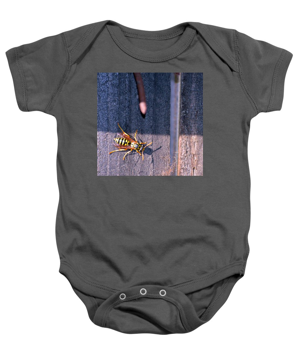 Fence Baby Onesie featuring the photograph Wasp by Brent Dolliver