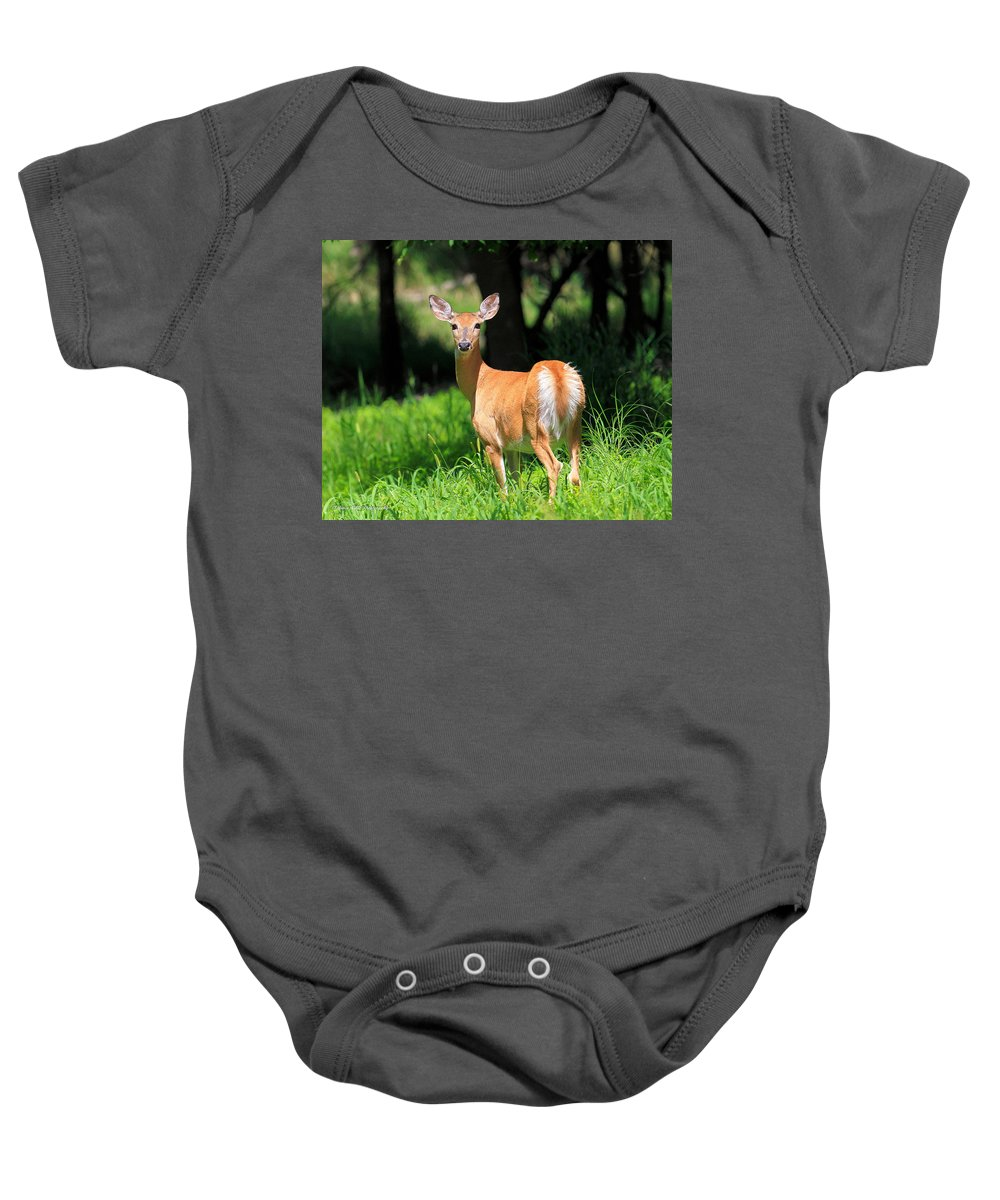 Deer Baby Onesie featuring the photograph Watching Me by Bruce Nikle