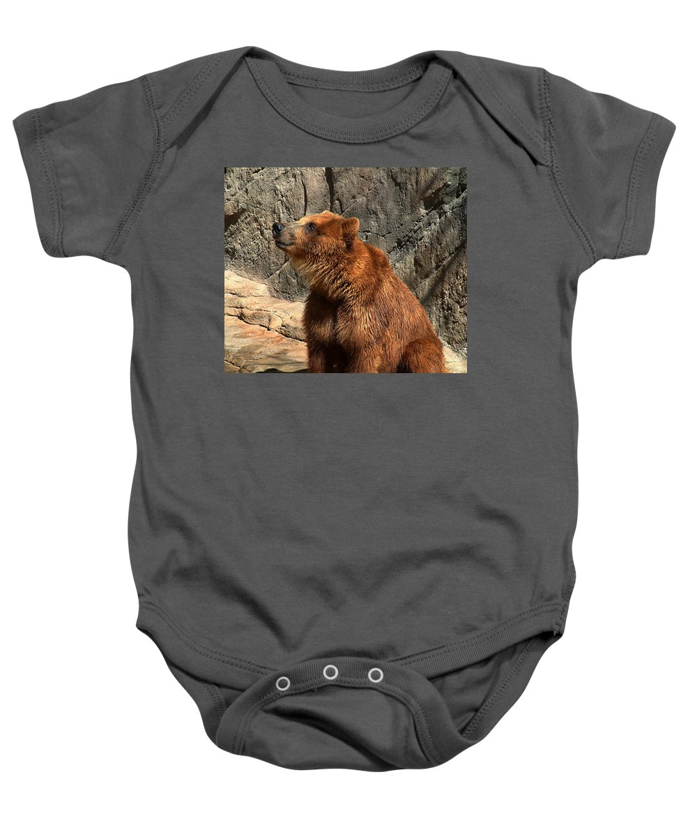 Bear Baby Onesie featuring the photograph Watching The Sun Set by RC DeWinter