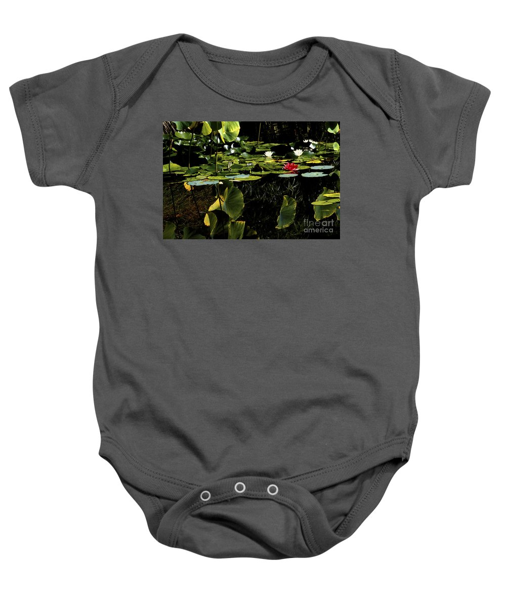 Water Lilies Baby Onesie featuring the photograph Water Lily Pond by Paul W Faust - Impressions of Light