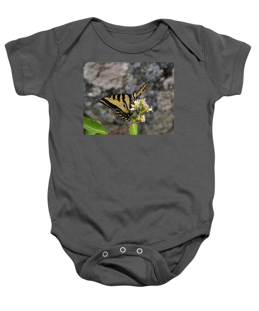Spokane Baby Onesie featuring the photograph Western Tiger Swallowtail Butterfly 2 by Ben Upham III