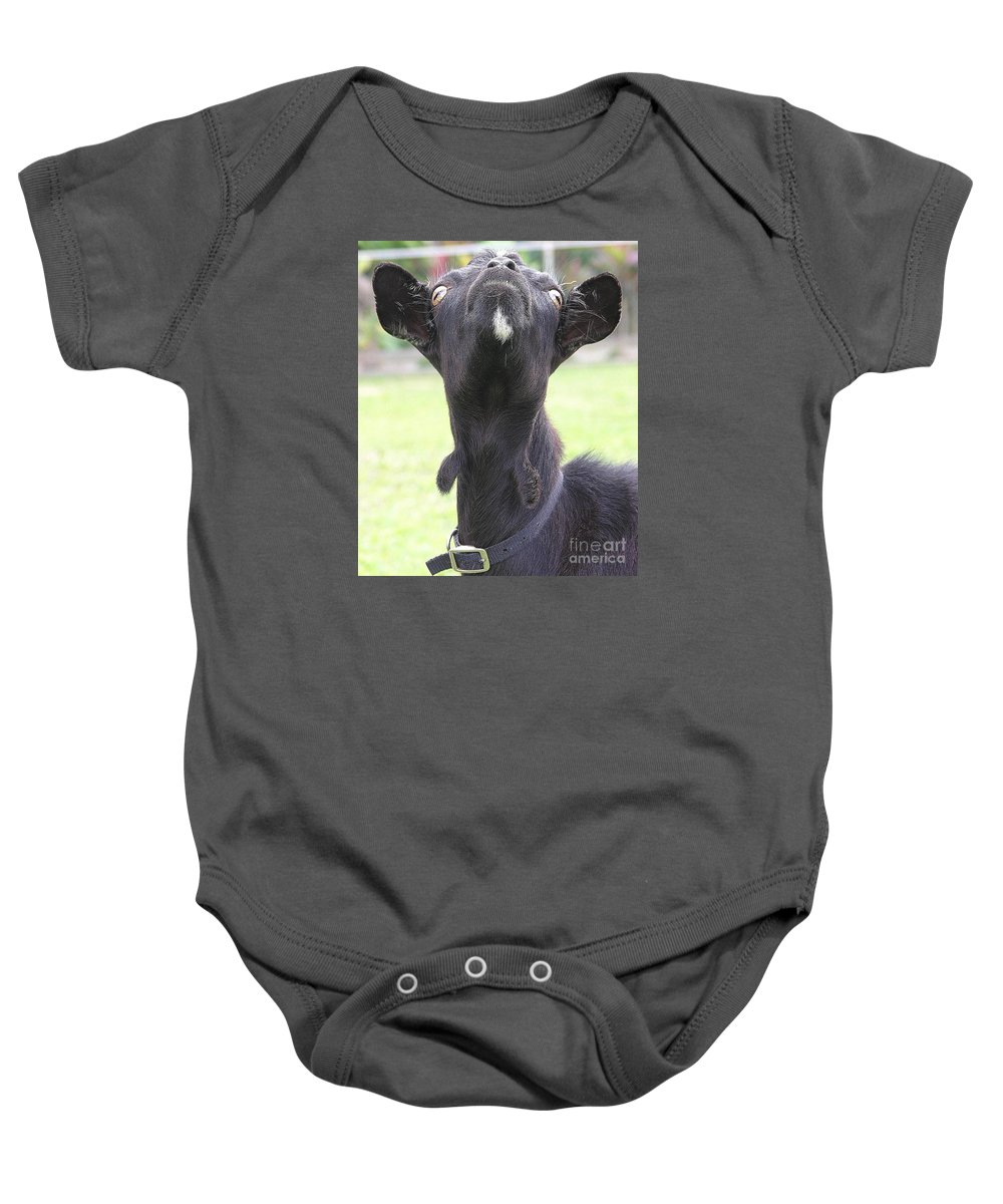 Goat Baby Onesie featuring the photograph Whats Up by Mary Deal