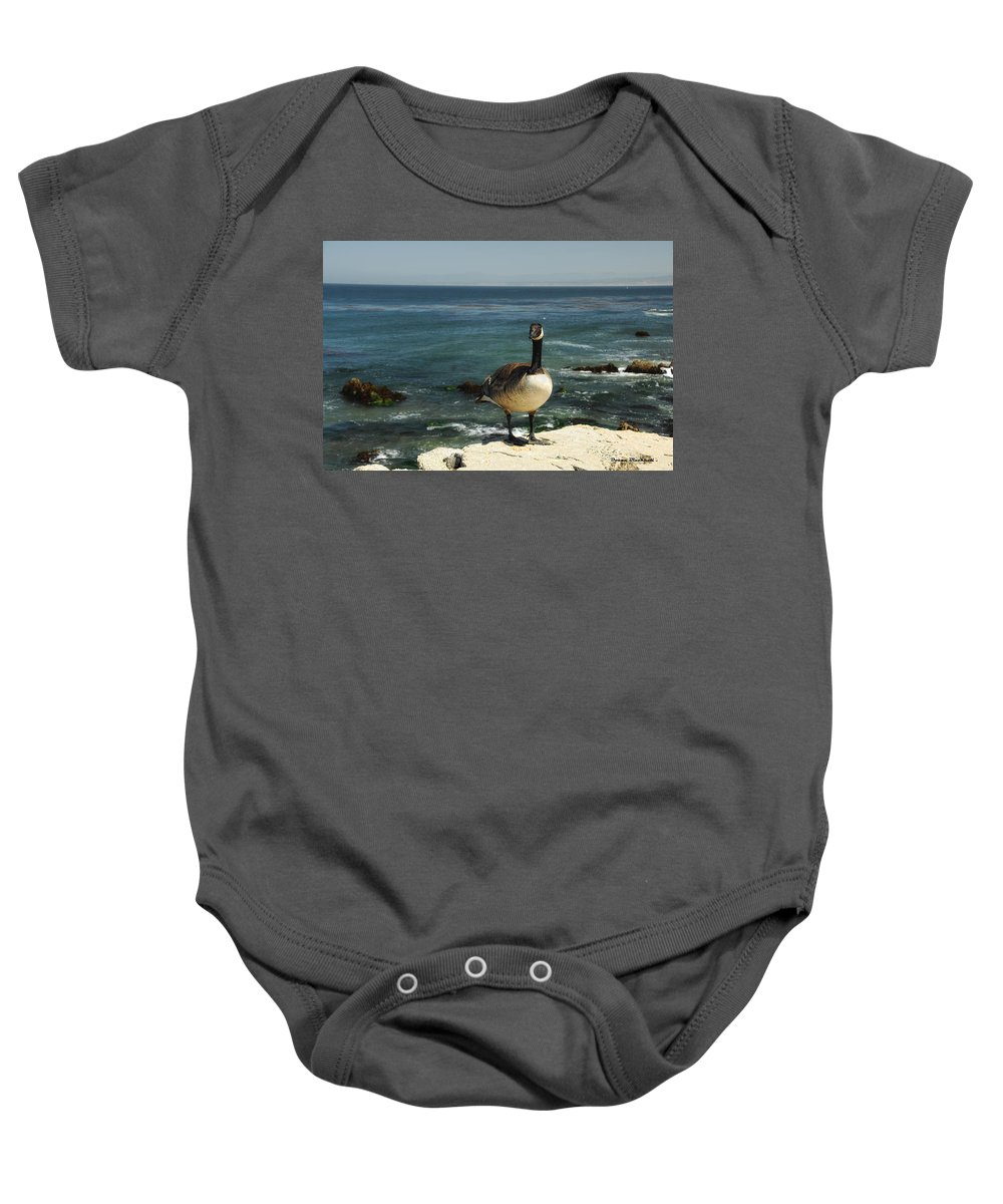 Goose Baby Onesie featuring the photograph Where Do I Go From Here by Donna Blackhall