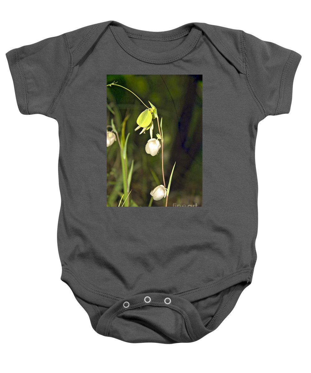 Wildflowers; Globes; Nature; Green; White Baby Onesie featuring the photograph Whispers by Kathy McClure