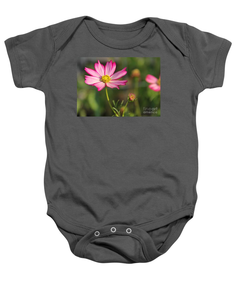 Flowers Baby Onesie featuring the photograph White And Magenta Cosmos by Jack Schultz