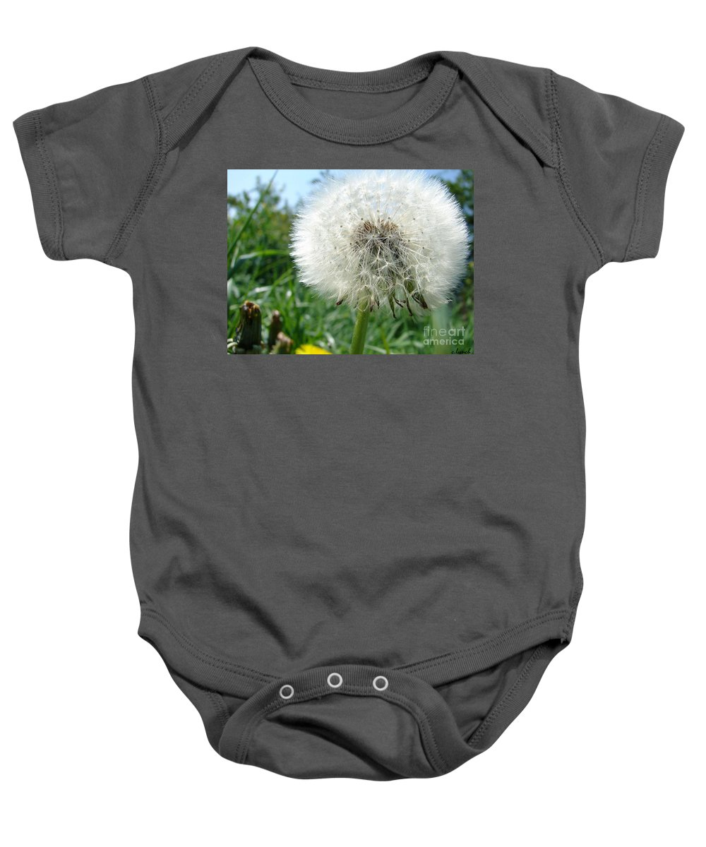 Fluffy Baby Onesie featuring the photograph White Fluffy by Carol Lynch