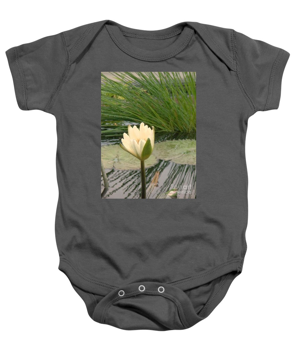 Water Lilies Baby Onesie featuring the photograph White Lily Near Pond Grass by Eric Schiabor