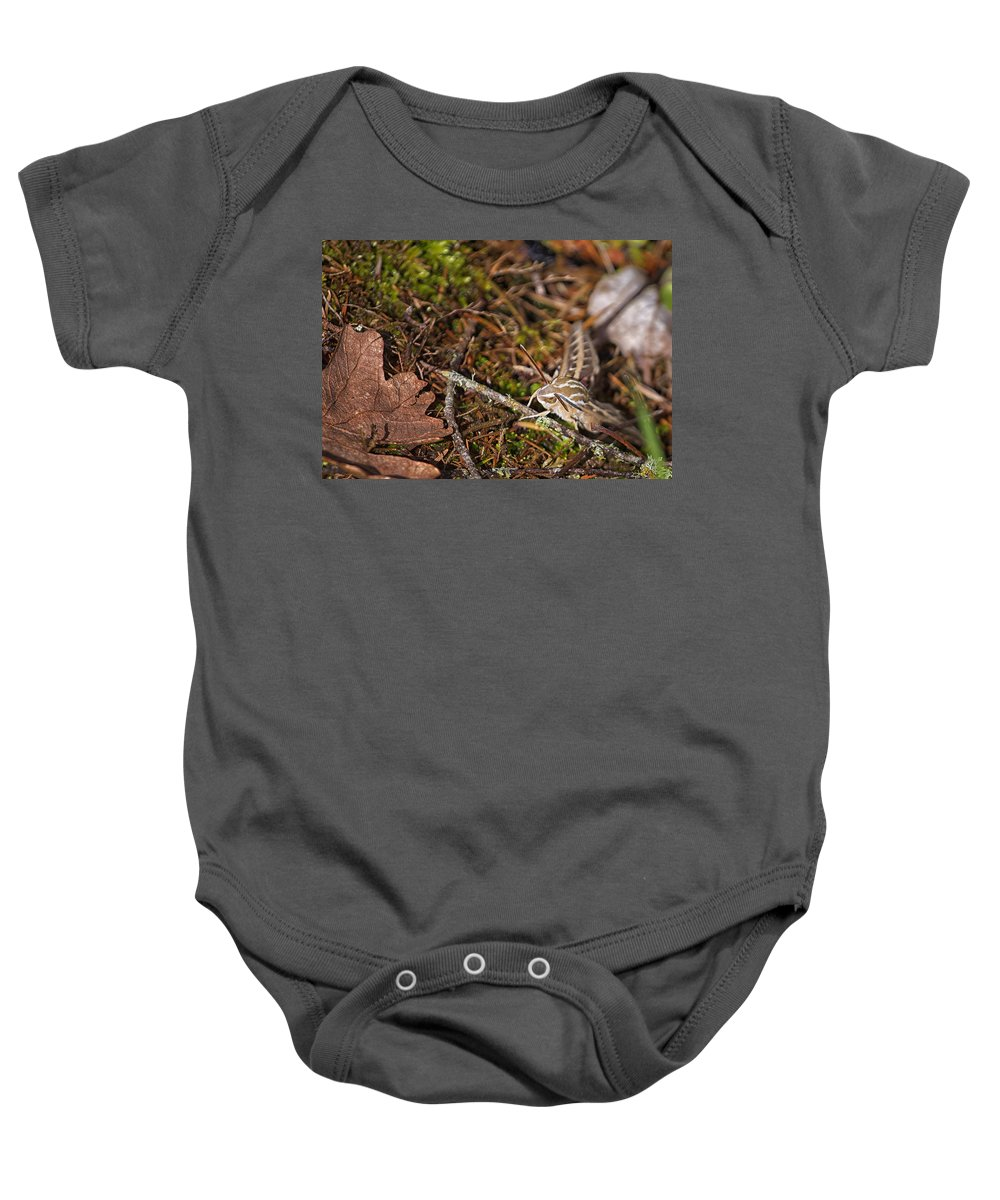 White-lined Sphinx Moth Baby Onesie featuring the photograph White-lined Sphinx Moth by Belinda Greb