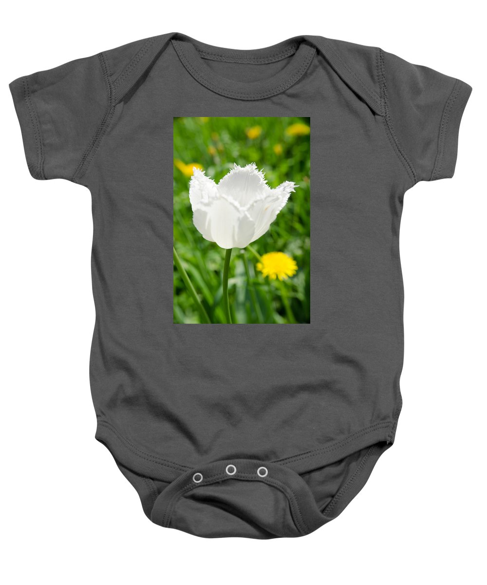 Backlit Baby Onesie featuring the photograph White Tulip On The Green Background by Michael Goyberg