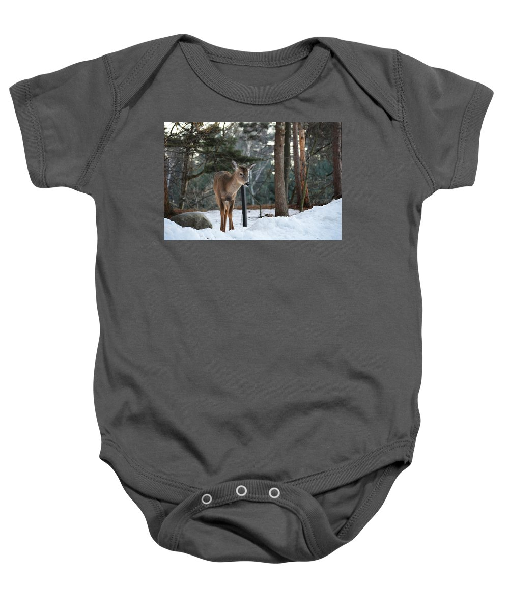 Michigan Baby Onesie featuring the photograph Whitetail In Woods by Linda Kerkau