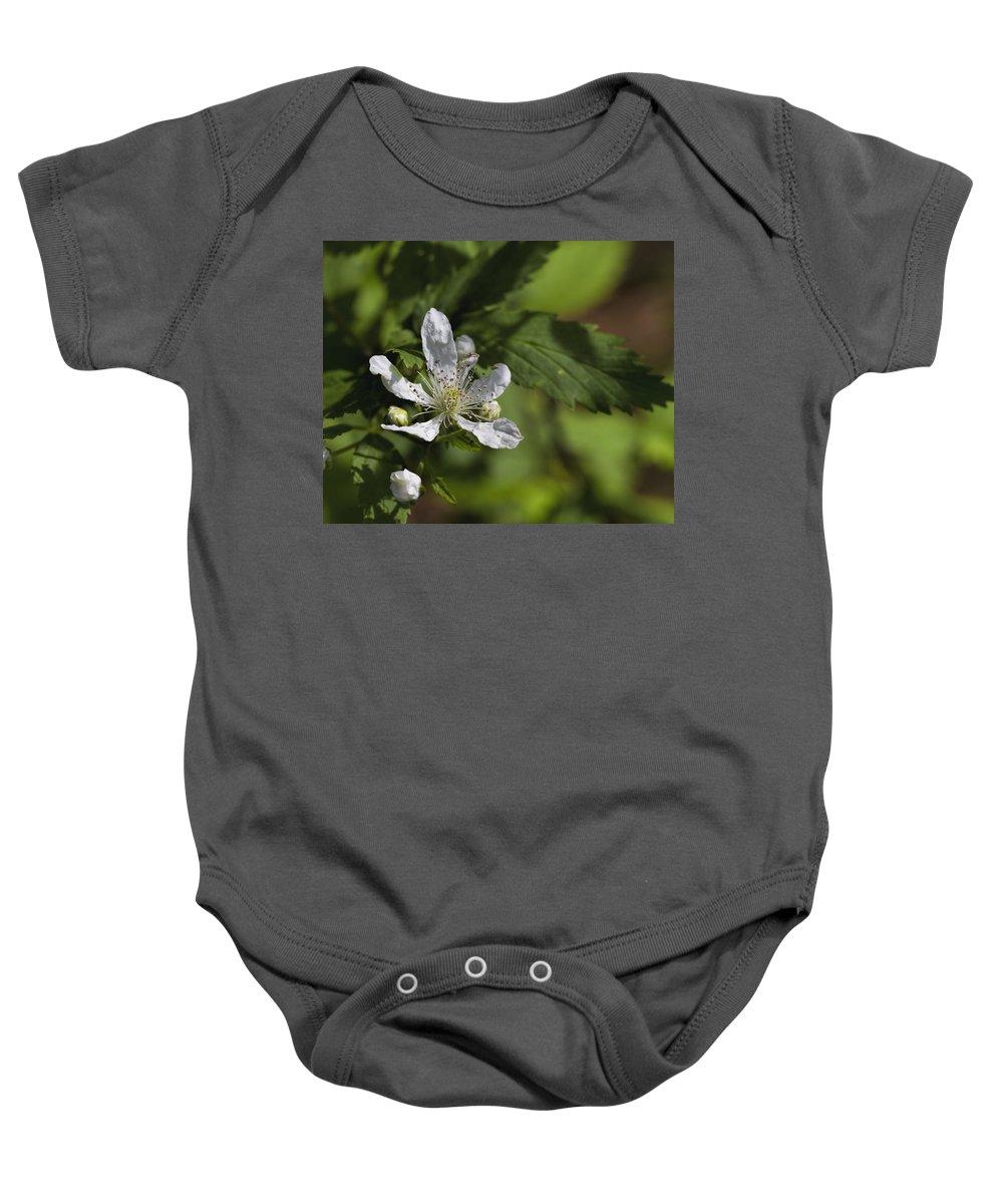 Sawtooth Blackberry Baby Onesie featuring the photograph Wild Alabama Blackberry Blossom by Kathy Clark