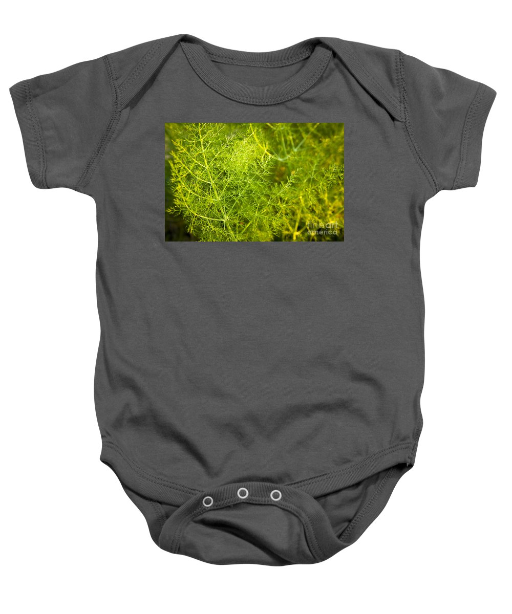 Aline Baby Onesie featuring the photograph Wild Aniseed by Tim Hester