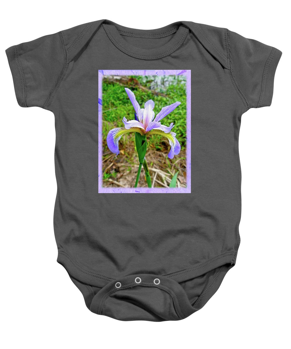 Iris Baby Onesie featuring the photograph Wild Flag - Iris Versicolor by Mother Nature