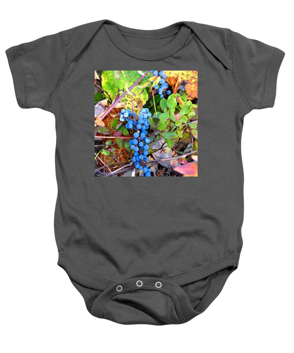 Fox Grapes Baby Onesie featuring the photograph Wild Grapes by Todd Hostetter