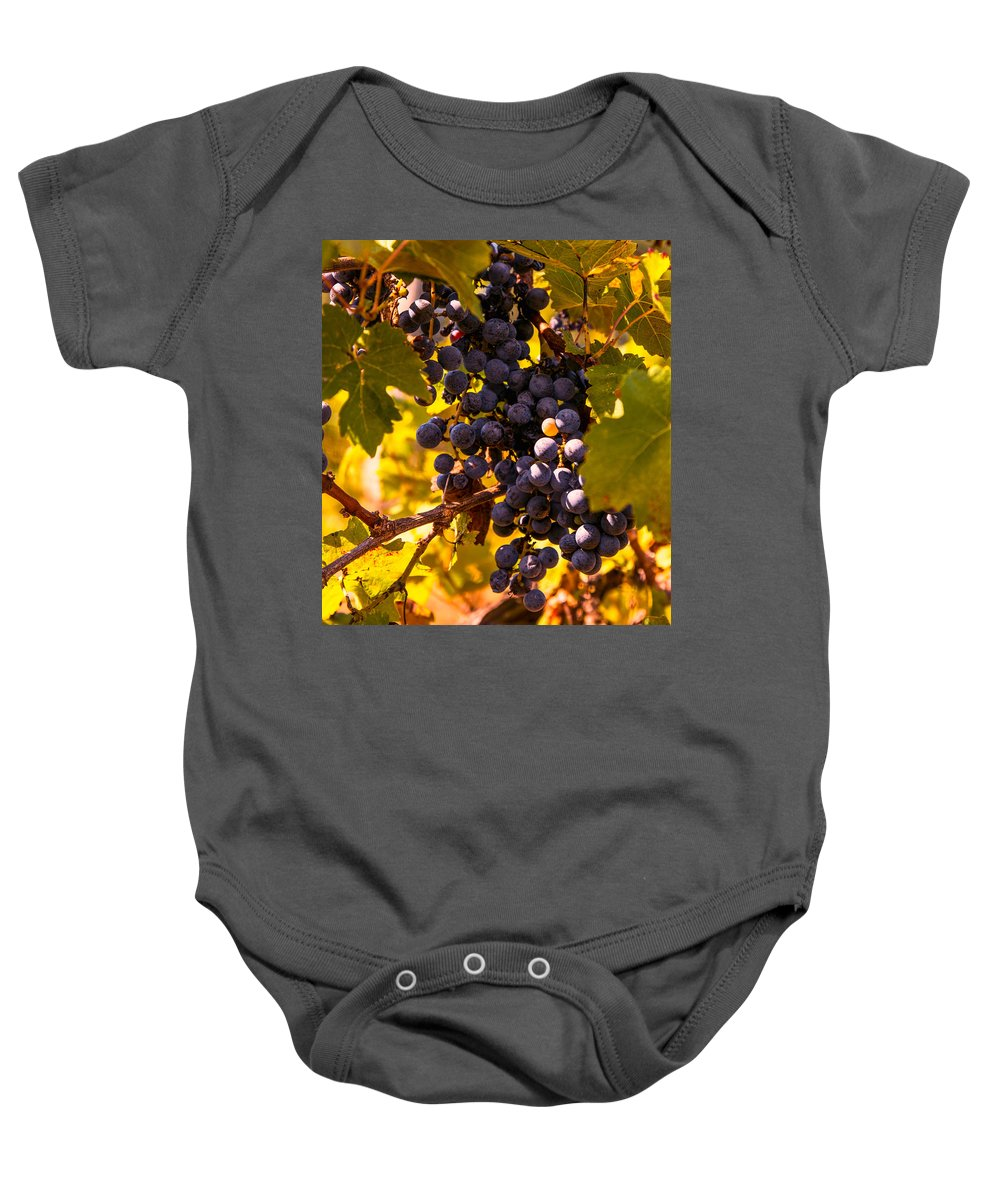 Grape Baby Onesie featuring the photograph Wine Grapes by Zina Stromberg
