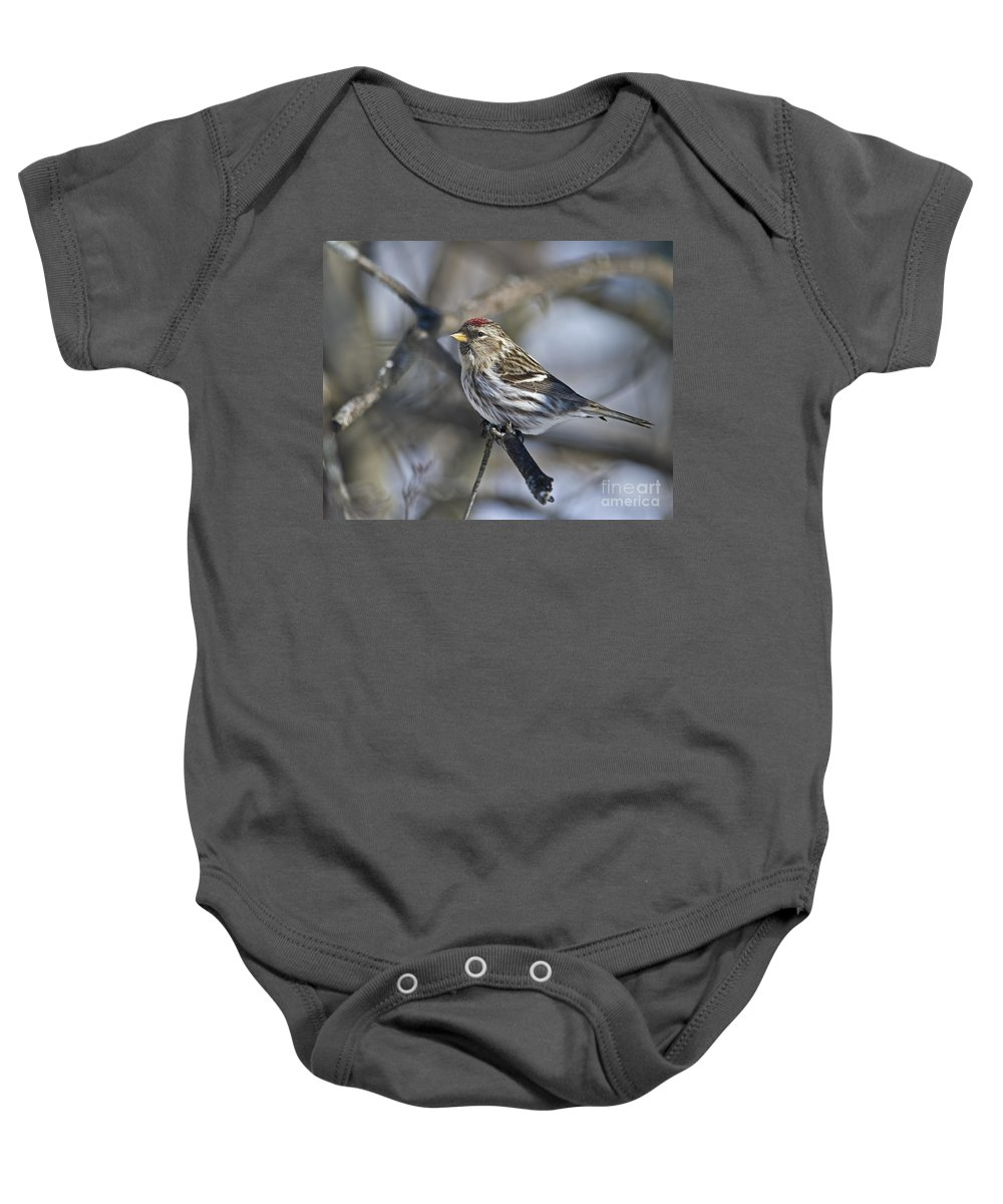 Festblues Baby Onesie featuring the photograph Winter Beauty.. by Nina Stavlund