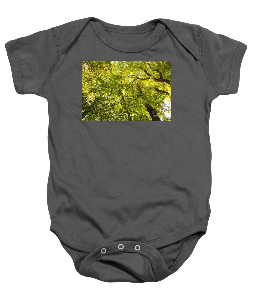 Green Baby Onesie featuring the photograph Woodland Background 02 by Antony McAulay