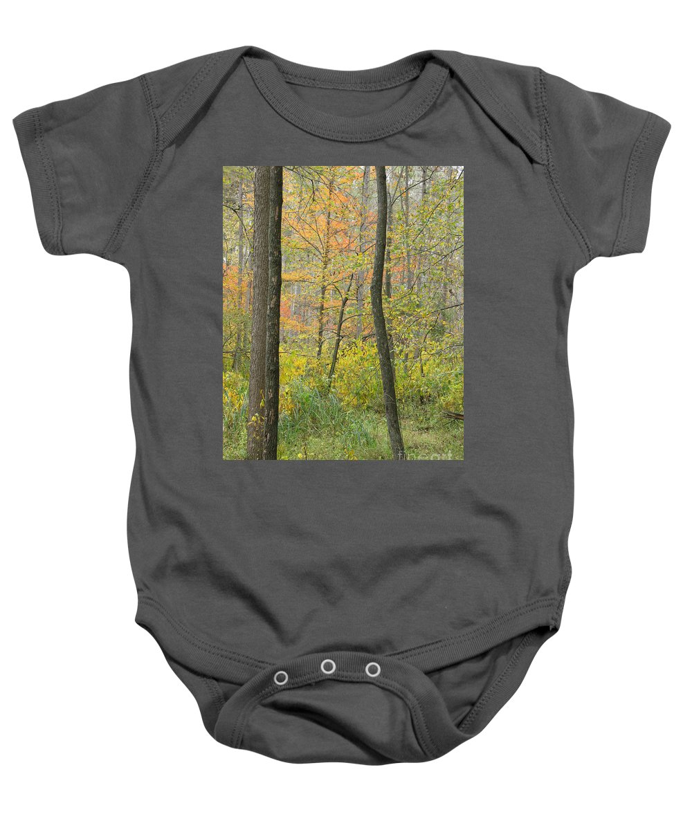 Autumn Baby Onesie featuring the photograph Woodland Interior by Ann Horn