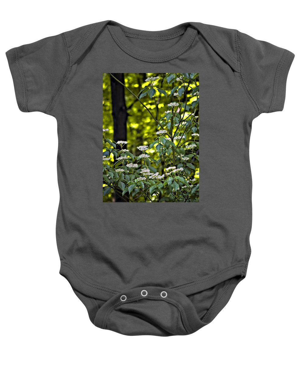 Woods Baby Onesie featuring the photograph Woods Faeries by Steve Harrington