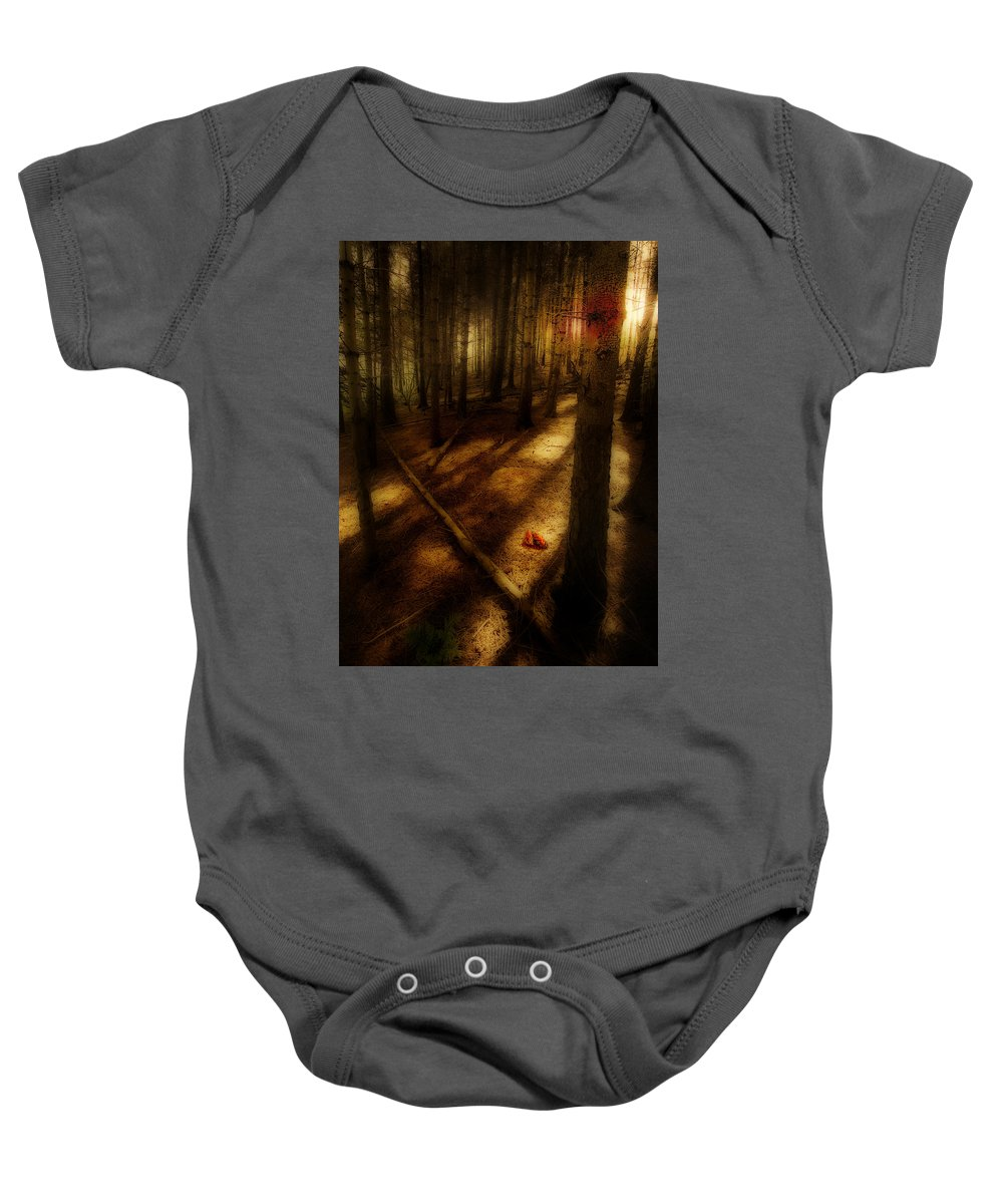 Woods Baby Onesie featuring the photograph Woods With Pine Cones by Meirion Matthias