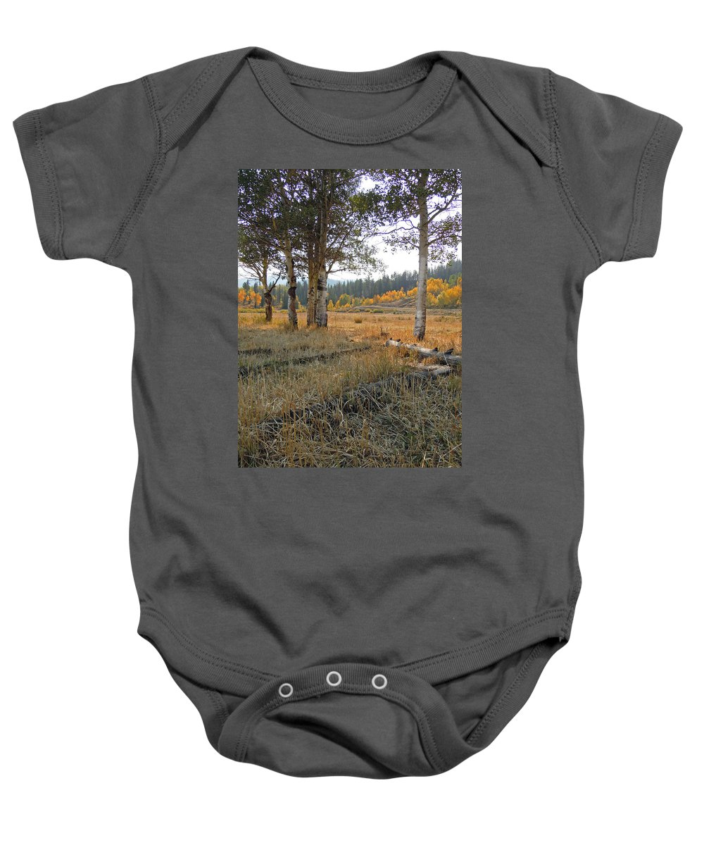Aspen Baby Onesie featuring the photograph Wyoming Gold by Heather Coen