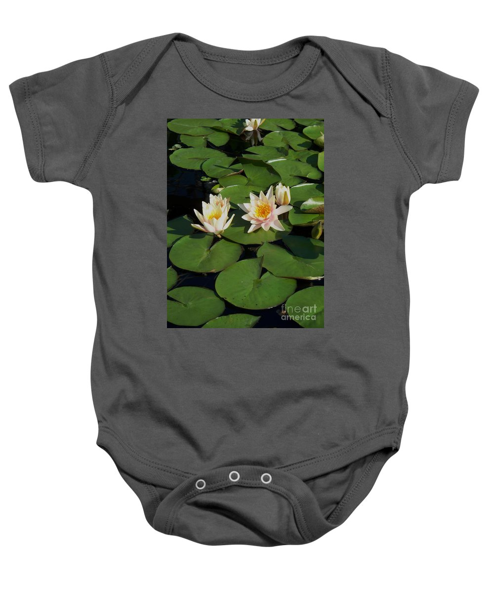 Water Lilies Baby Onesie featuring the photograph Yellow And Pink Lily by Eric Schiabor