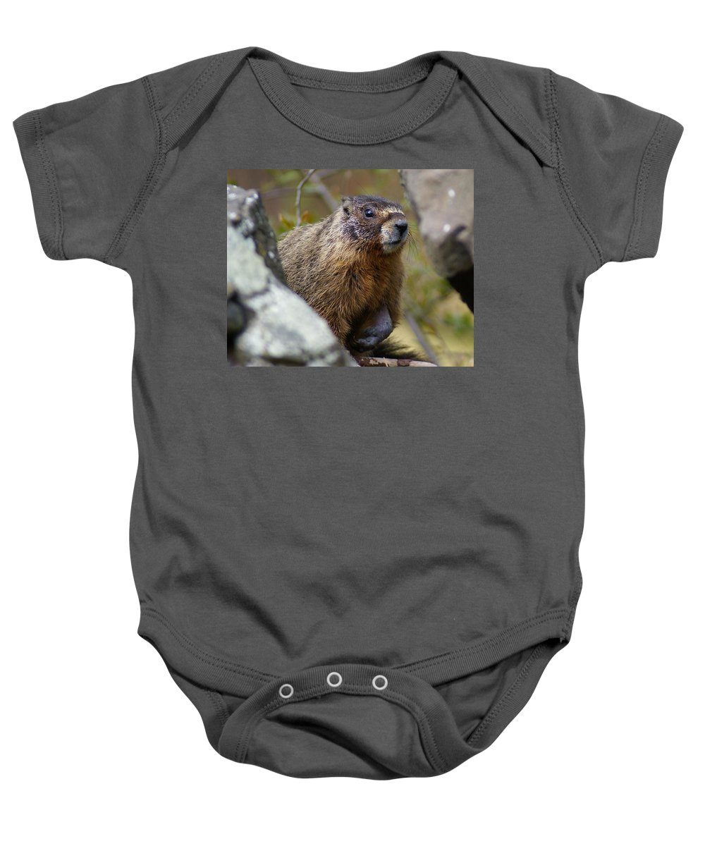 Spokane Baby Onesie featuring the photograph Yellow-bellied Marmot by Ben Upham III