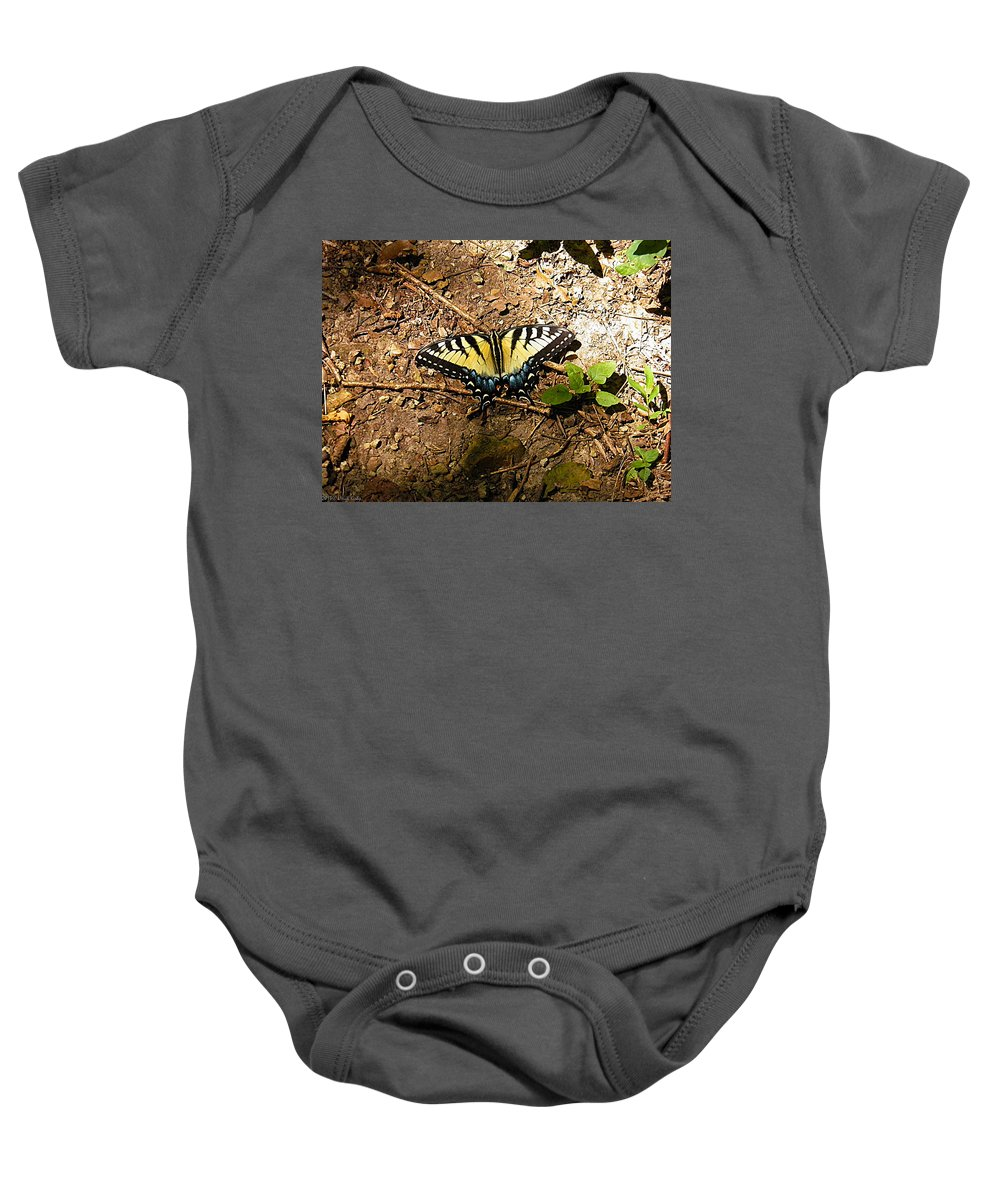 Butterfly Baby Onesie featuring the photograph Yellow Butterfly by Nick Kirby