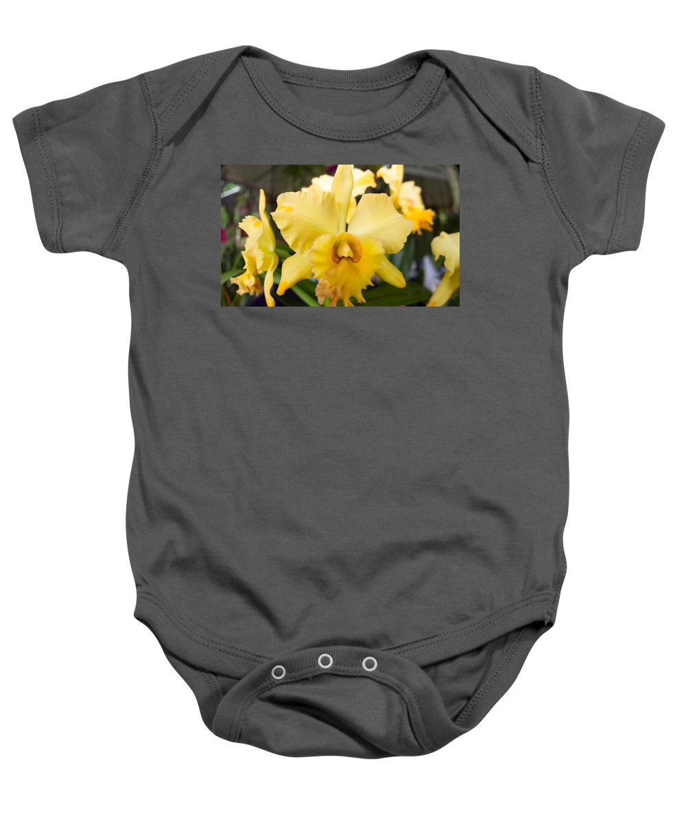 Yellow Baby Onesie featuring the photograph Yellow Orchids by Eric Barnes