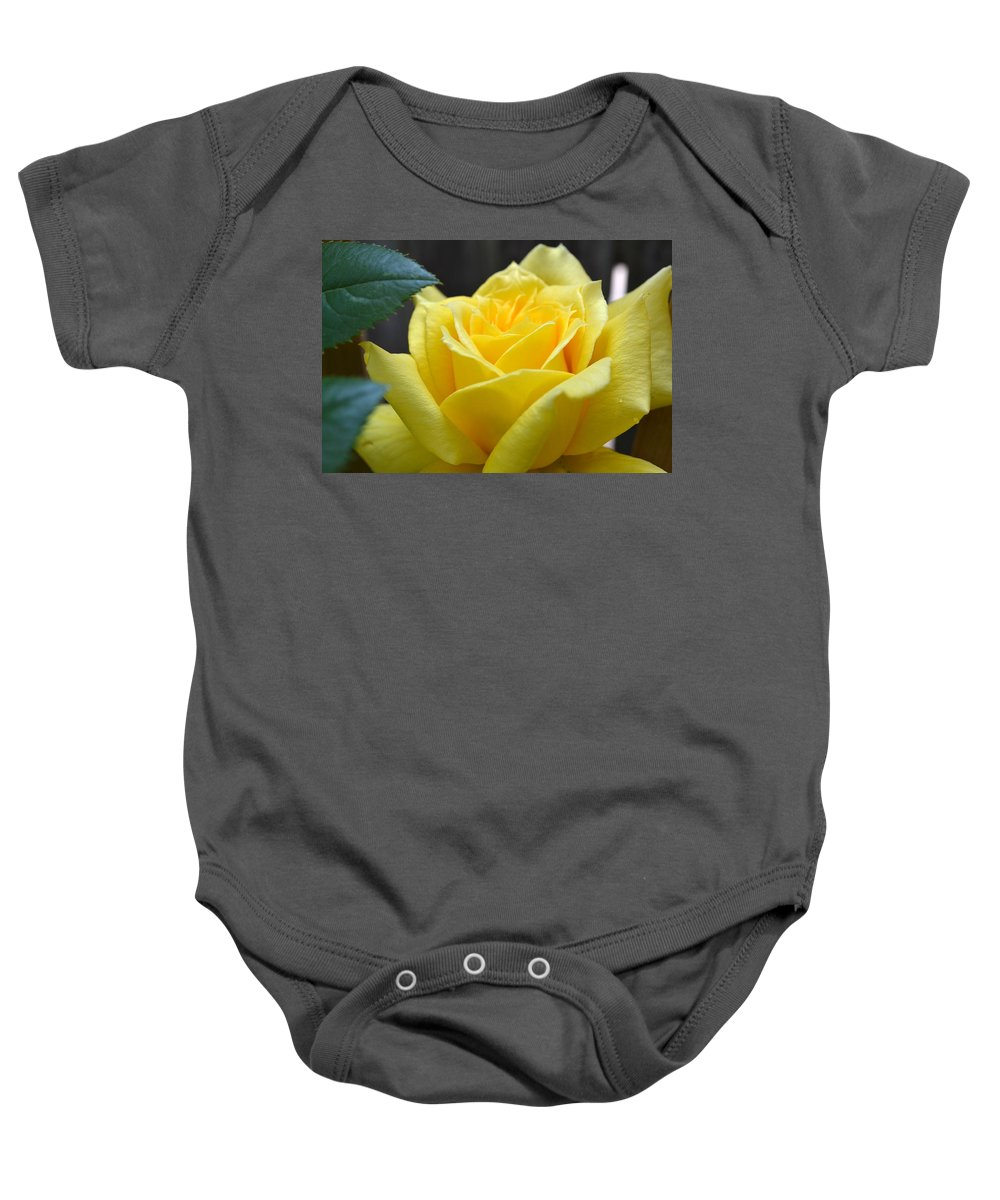 Rose Baby Onesie featuring the photograph Yellow Rose Ll by Michelle Calkins