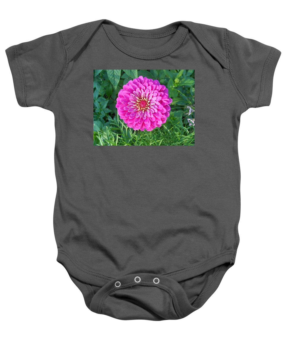 Flowers Baby Onesie featuring the photograph Zinnia - Pink by Coleen Harty