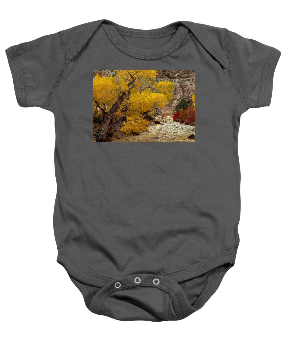 Autumn Baby Onesie featuring the photograph Zion National Park Autumn by Leland D Howard