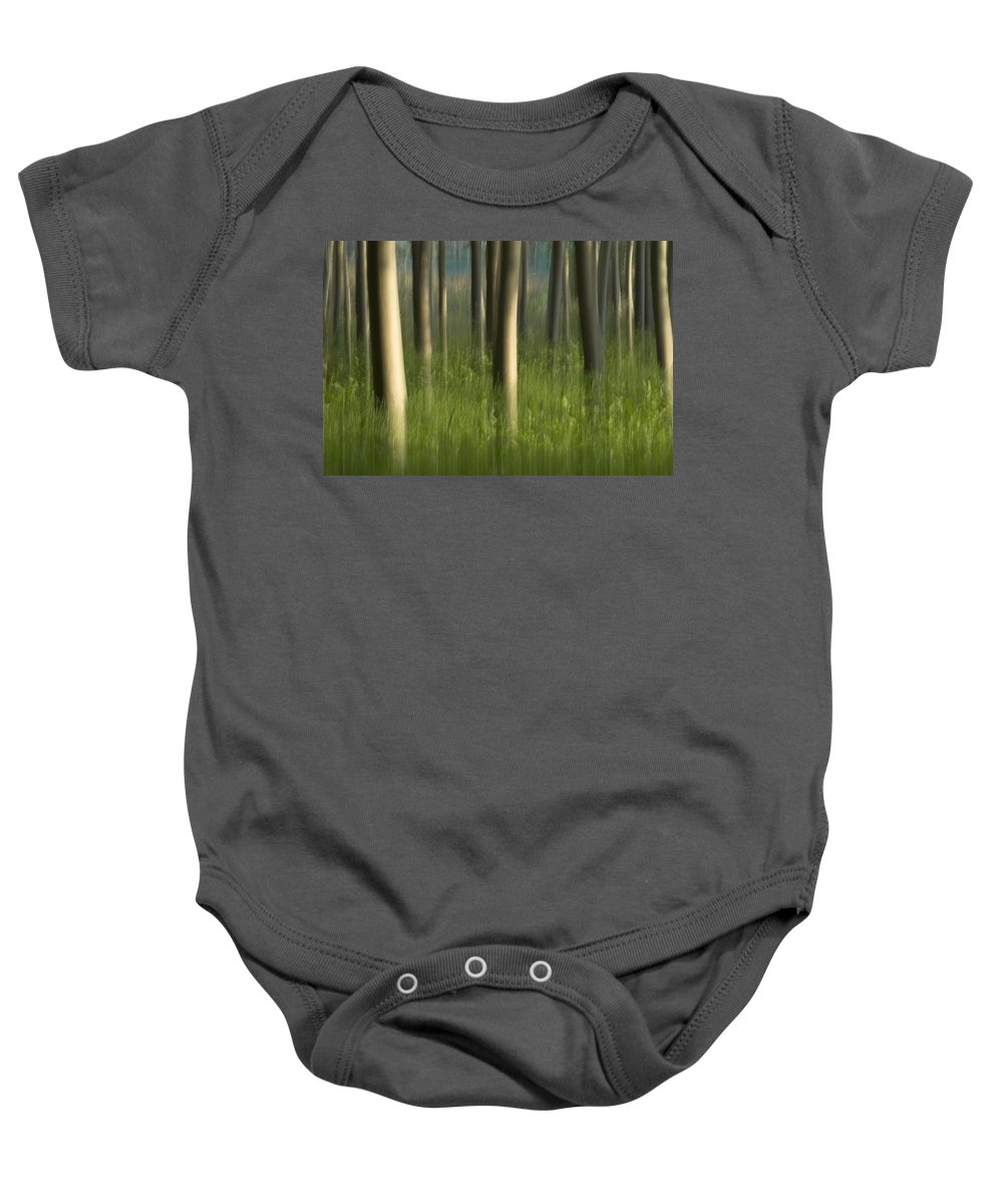 Abstracts Baby Onesie featuring the photograph Green Alameda by Guido Montanes Castillo